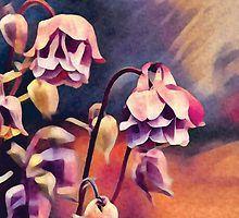 Pink Watercolour Columbines by marsartpics
