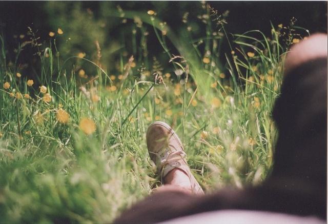 run to the fields: Natural Wise, Photos, Summer Lif, Grass, Photography Dimen, Summer Haze, Optimist Life, Fields, Pretty Stuff