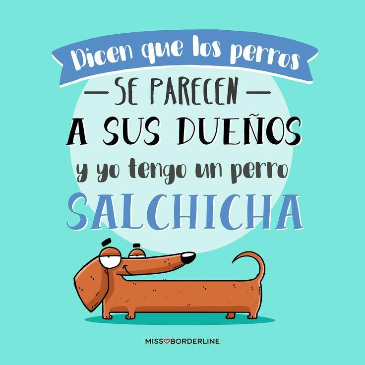 Dicen que los perros se parecen a sus dueños y yo tengo un perro salchicha. #frases #humor #graciosas #divertidas