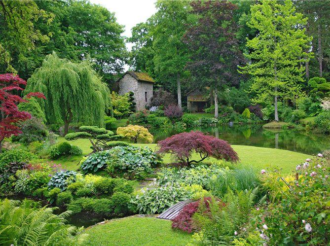 Indispensables pour rythmer les massifs ou créer des points de vue, les arbres et arbustes aux silhouettes particulières s'invitent au jardin.