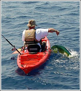Top 37 ideas about saltwater kayak fishing on pinterest for Offshore kayak fishing