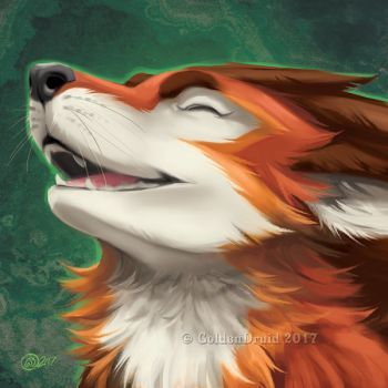 Nym - SpeedPaint by GoldenDruid