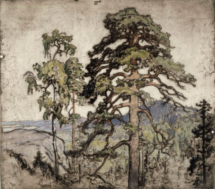 Finnish National Gallery - Art Collections - Koli