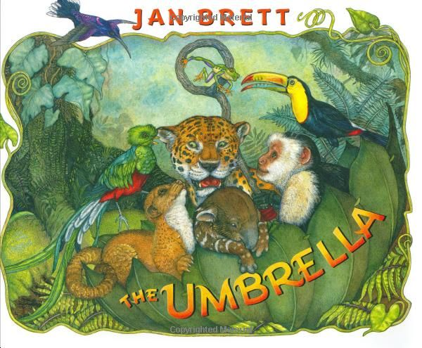 The Umbrella by Jan Brett