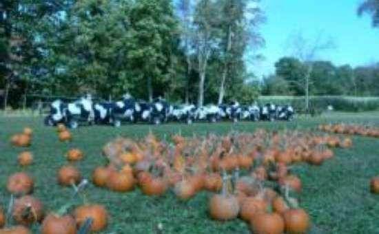 Liberty Ridge Farm's Fall Festival - Today until Tue, Nov 11, 2014 - Saratoga Springs, NY Events
