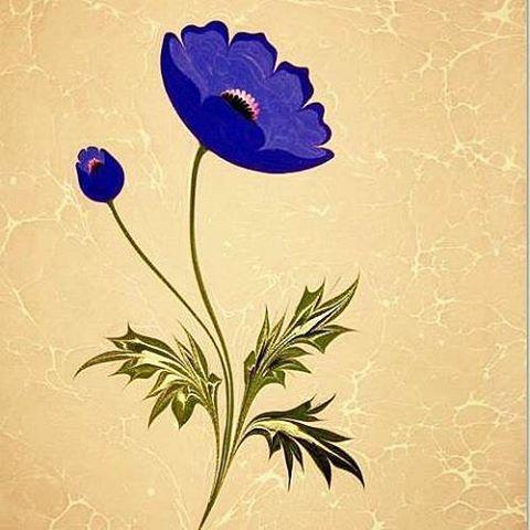 Anemon Çiçeği.. Ilk kez 2011 Nevbahar sergimde murakkalı olarak sergilenmiştir.. Çok kıymetli Hocam Yılmaz Eneş'in beğenip koleksiyonuna kattığı özel bir çiçektir benim için..