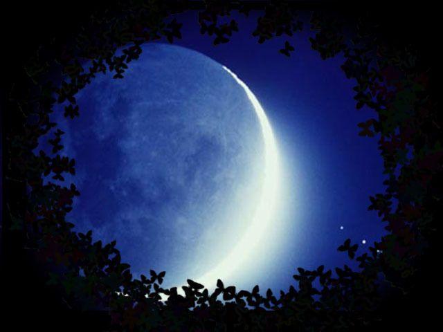 Volle maan en slecht slapen, waardoor je overdag extra moe bent. Lees in deze blog van HSP Psycholoog Femke de Grijs wat je ertegen kunt doen.