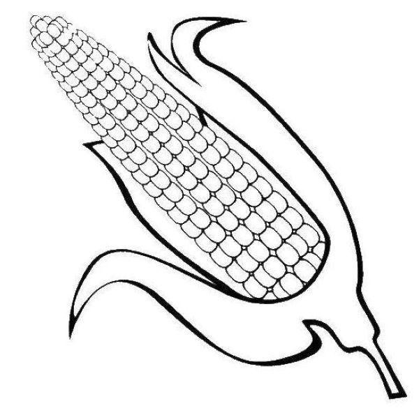 Corn Coloring Pages Printable Free Coloring Sheets Halaman Mewarnai Warna Kerajinan Tangan Anak