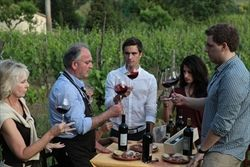 Private Wine Tasting - Torciano - italian winery in tuscany