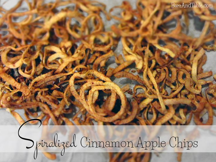 Spiralized Cinnamon Apple Chips Barr & Table