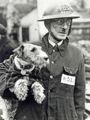 """Wire-haired fox terrier """"Beauty"""", PDSA (People's Dispensary for Sick Animals), with Superintendent Bill Barnet. Beauty was credited with rescuing 63 animals from the ruins of the London Blitz, 1940-'41, in recognition of which she was awarded the PDSA Dickin Medal - the """"Animals' Victoria Cross""""."""