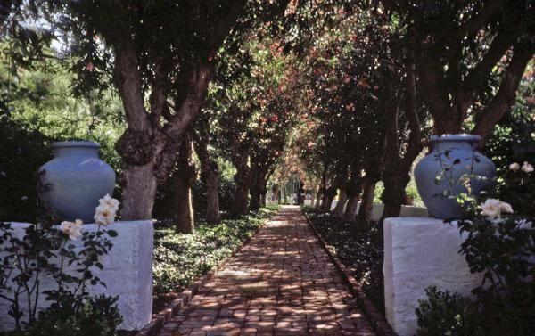 Rancho Los Alamitos | The Cultural Landscape Foundation