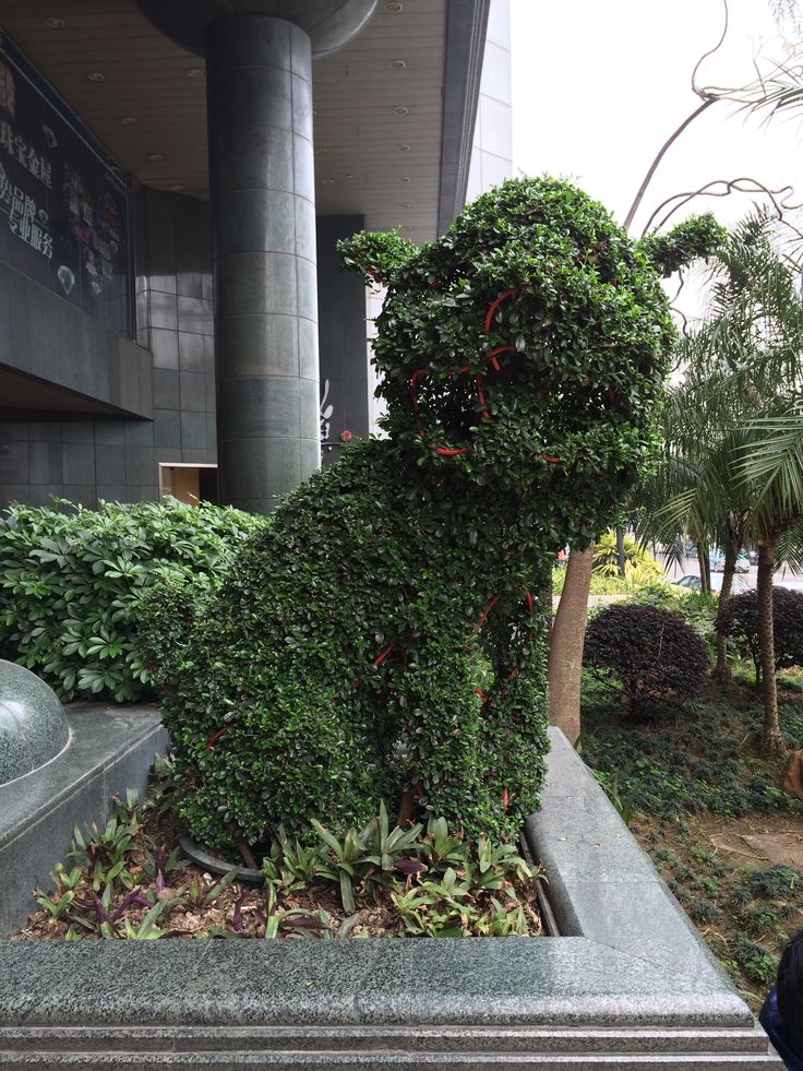 281 Best Images About Foo Dogs On Pinterest