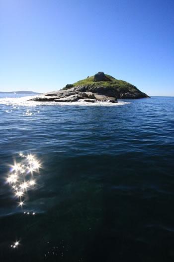 Seal Island, King George Sound Albany, Western Australia