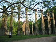 The ruins of Windsor, Claiborne Co., MS. Used to drive over to see the columns, all alone in a pasture full of cows. Sad.