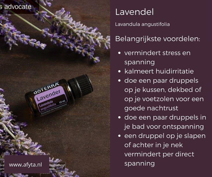 Hoe een paar druppels lavendelolie mijn leven konden veranderen. Lees mijn blog hierover.