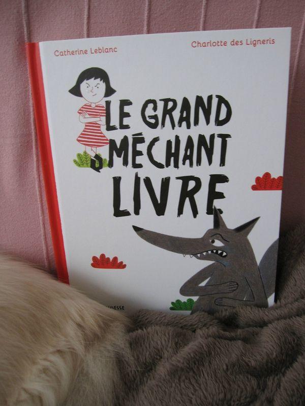 Le grand méchant livre - Catherine Leblanc et Charlotte des Ligneris