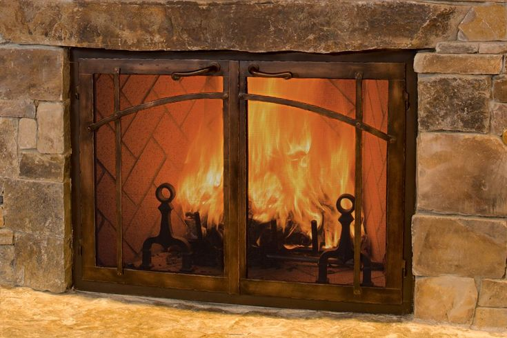 fireplaces with doors - Google Search