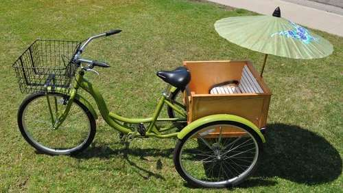My Rickshaw - want Hal to build this so he can pedal me up and down the road under my little unbrella