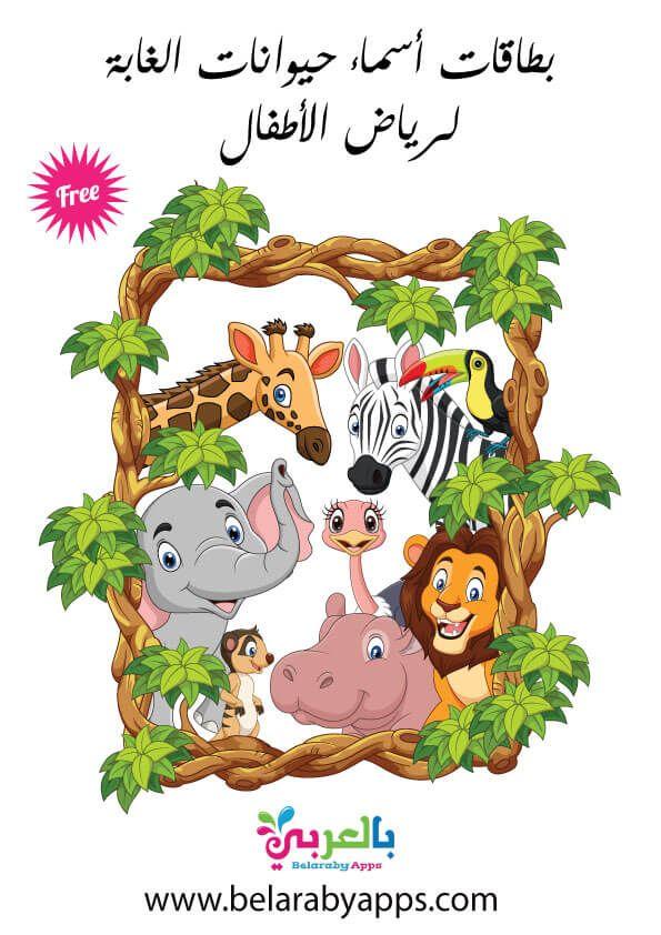 بطاقات أسماء حيوانات الغابة بالصور وحدة الحيوانات رياض اطفال بالعربي نتعلم In 2021 Adventure