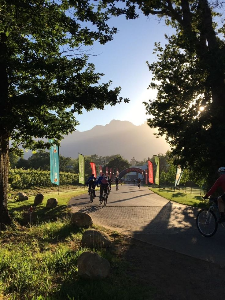 What to Expect When Participating in the Wine2Whales Mountain  Biking Race