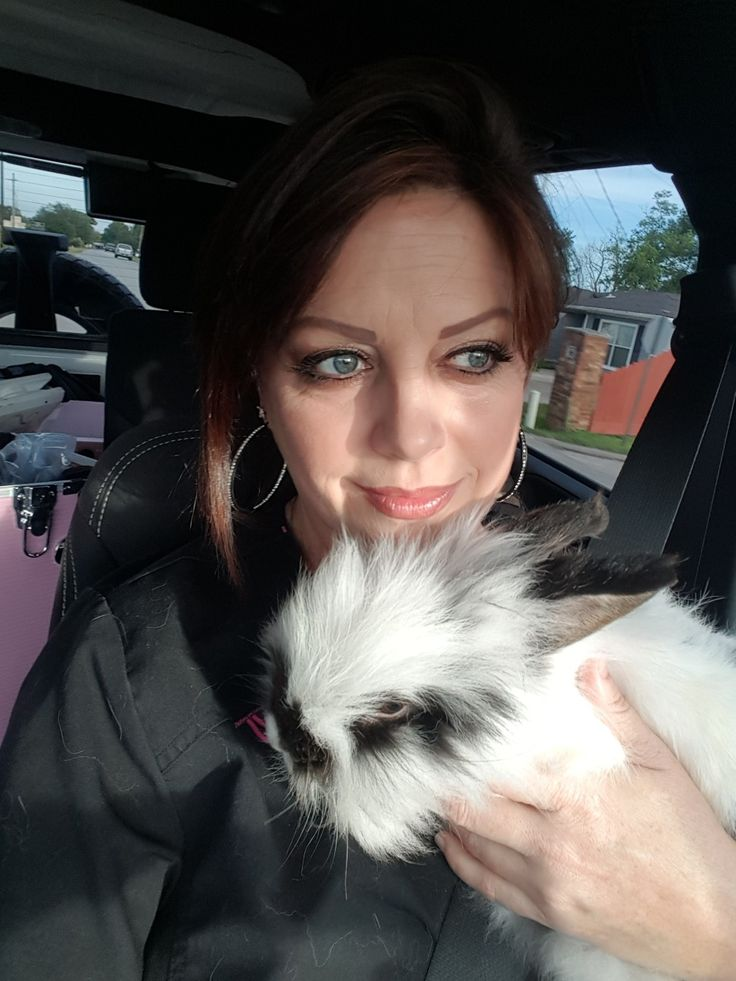 Driving Mrs Sally home to Ferro Farm's.  When Harry Met Sally. My female lionhead Sally rescued from Shcuffs Bunny Rescue, Bridge City, Texas & New Zealand Red male