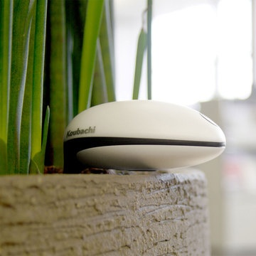 18 best images about i like on pinterest carafe boston and tunics - Monitor your indoor plants with the koubashi wi fi sensor ...
