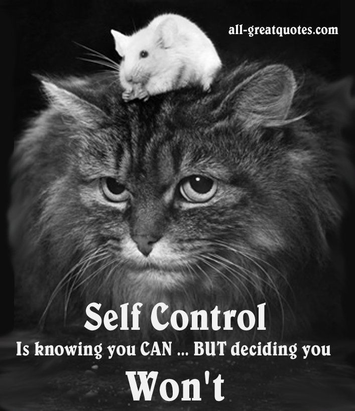 SSelf Control is knowing you CAN BUT deciding you Won't.