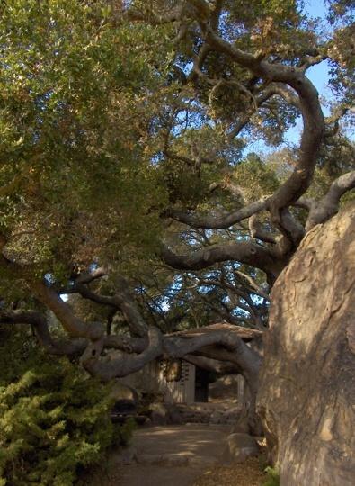 Santa Barbara Botanic Garden - Santa Barbara, CA - Kid friendly activity reviews - Trekaroo