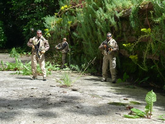 VIP Protection Team Red du Naval Special Warfare Development Group... In Action
