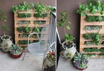 Wat kan je toch veel met pallets. Ook voor je tuin of balkon zijn er veel mogelijkheden. Hieronder zie je een creatieve plantenrek, plantenbak, plantenkast, of hoe je het ook wilt noemen, gemaakt van een pallet.  Wat heb je nodig? Natuurlijk een pallet, 2 grote zakken potgrond, 16 pack potjes bloemen, een nietpistol, nietjes en zand papier.
