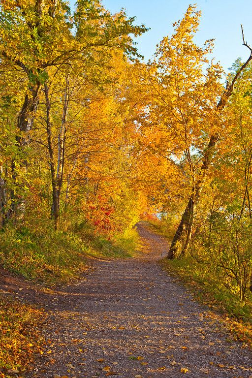 Cycle the Waterfront Trail in autumn!