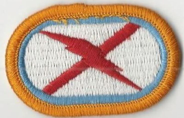 C TROOP, 1ST SQUADRON, 131ST CAVALRY REGIMENT