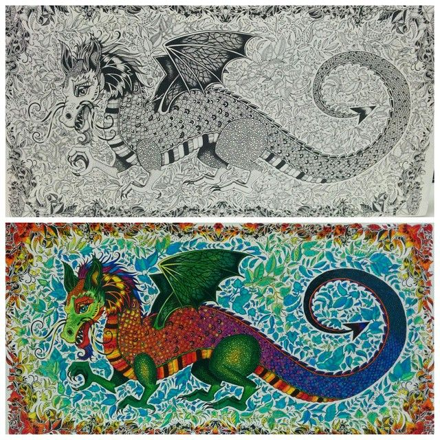 Dragon Enchanted Forest Dragao Floresta Encantada Johanna Basford ColouringAdult ColoringColoring BooksEnchanted