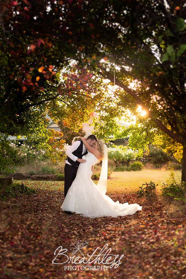 ORANGE GROVE , Culcairn wedding photography by Breathless Photography