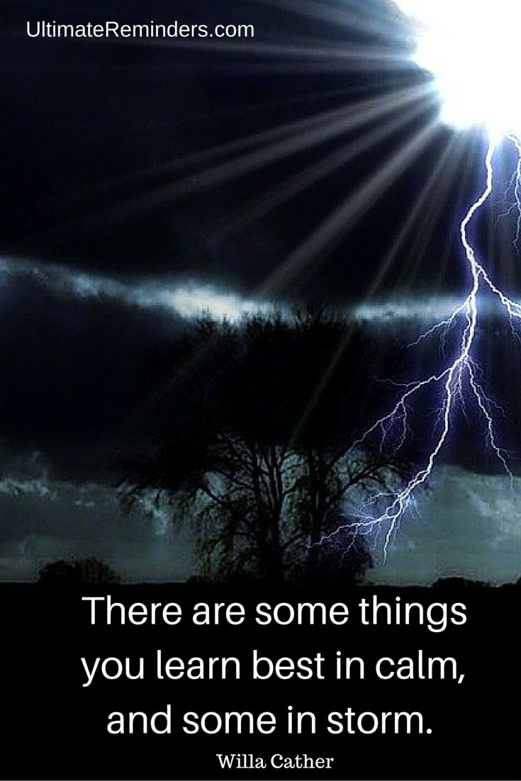 There are some things you learn best in calm, and some in storm - Willa Cather | Gina DeLapa, Ultimate Reminders Coach