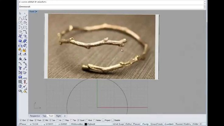 Basic Rhino tutorial on making an organic branch ring with Rhino Cad and...
