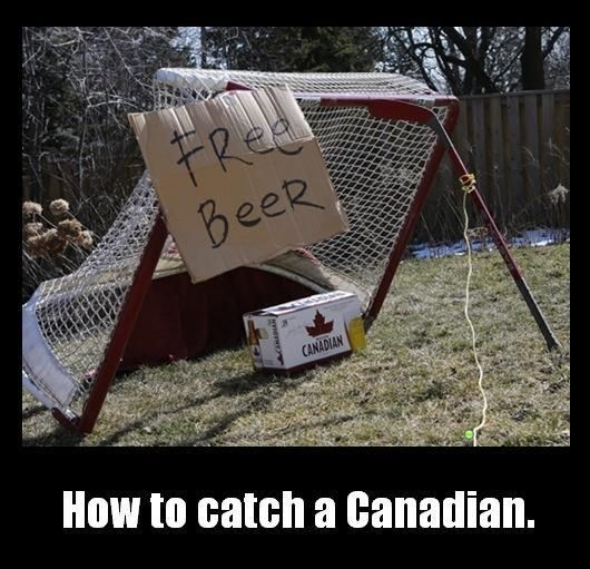 How do you catch a Canadian?