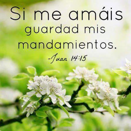 Imagenes Bonitas Con Citas Biblicas