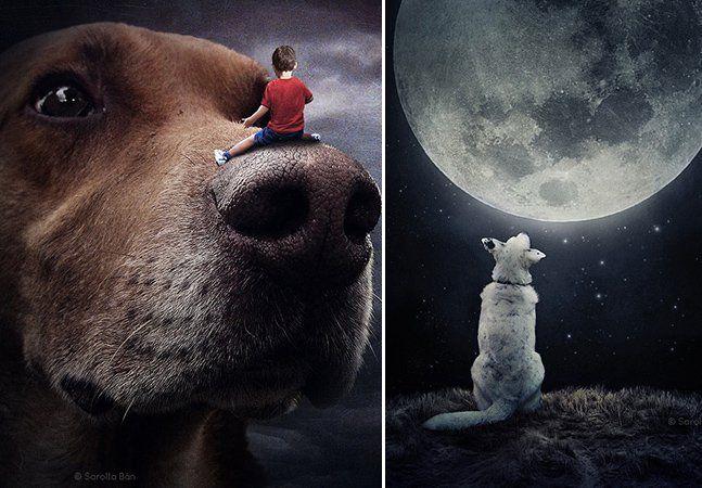Já pensou ter em casa uma criação exclusiva do espetacular fotógrafo húngaro Sarolta Bán, especialista em Photoshop? É o que ele oferece para quem apoia o projeto Help Dogs with Images(Ajude Cães com Imagens), que pretende tirar os animais da rua por meio da adoção. O húngaro Sarolta é conhecido por suas cenas que envolvem um mundo obscuro e um tanto quanto assustador. Tanto que é considerado um dos mestres do surrealismo na fotografia, tendo uma característica forte na manipulação de…
