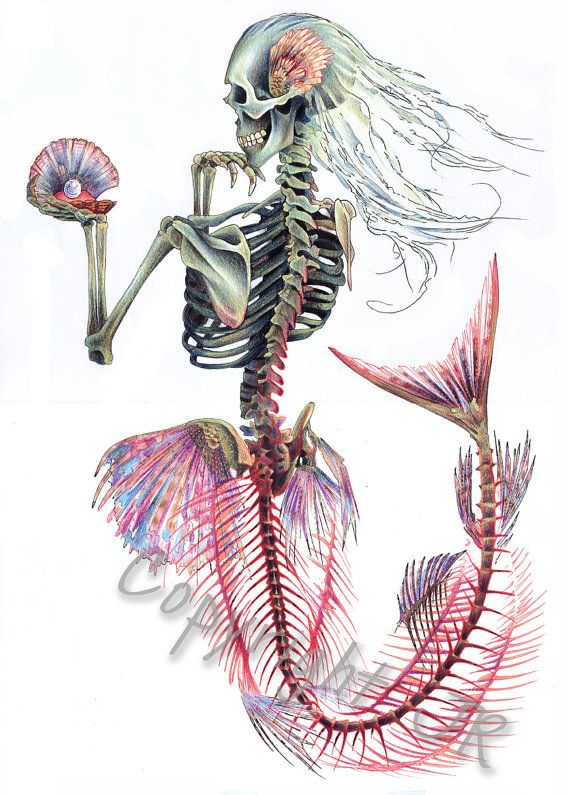 Mermaid Skeleton Print  8x10 by wengergirl on Etsy, $17.00