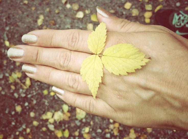 Naturvin | LilaLife