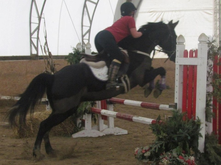 Oxers! Jumper Clinic !