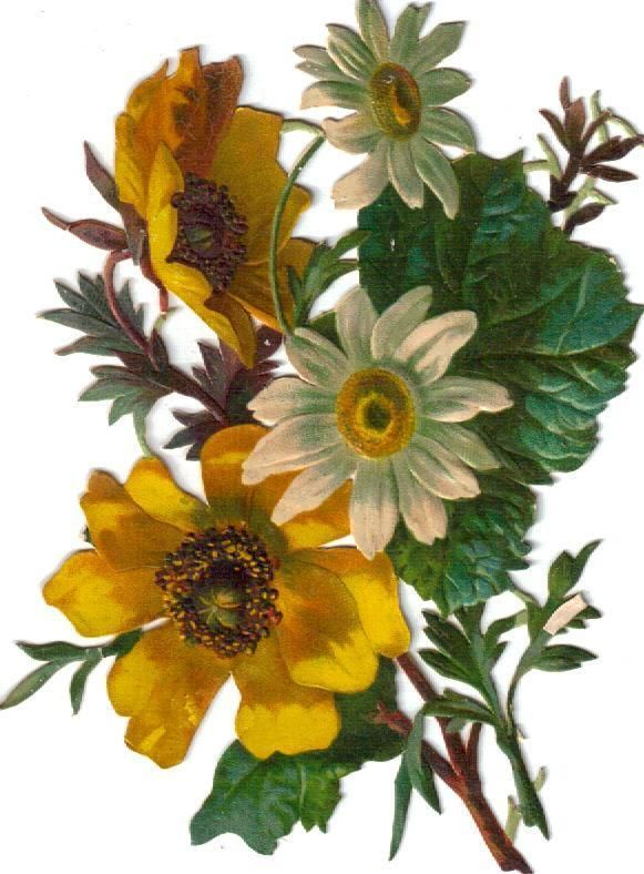 Victorian Scrap Daisy & Black Eyed Susan Bouquet Die Cut c1880