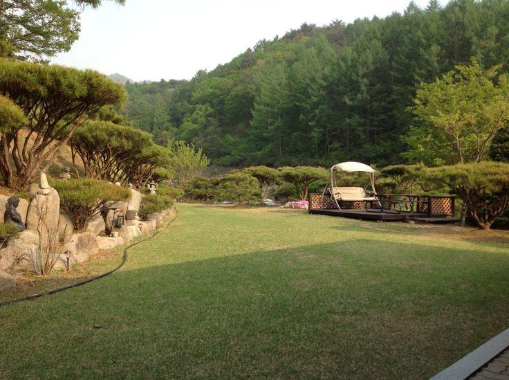 My Garden in kangwon-do.