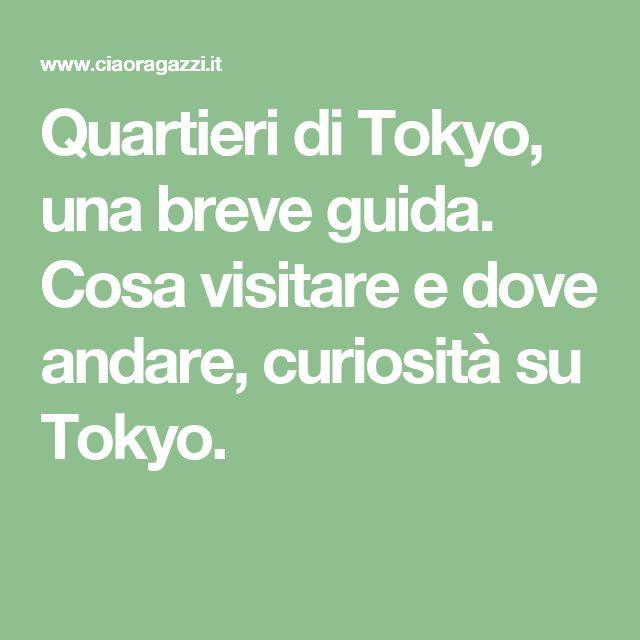 Quartieri di Tokyo, una breve guida. Cosa visitare e dove andare, curiosità su Tokyo.