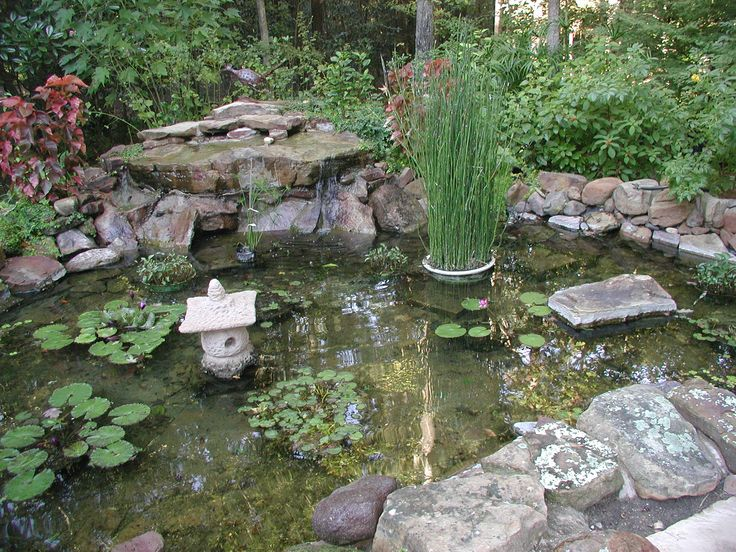 Summer Gardens With Water Features .