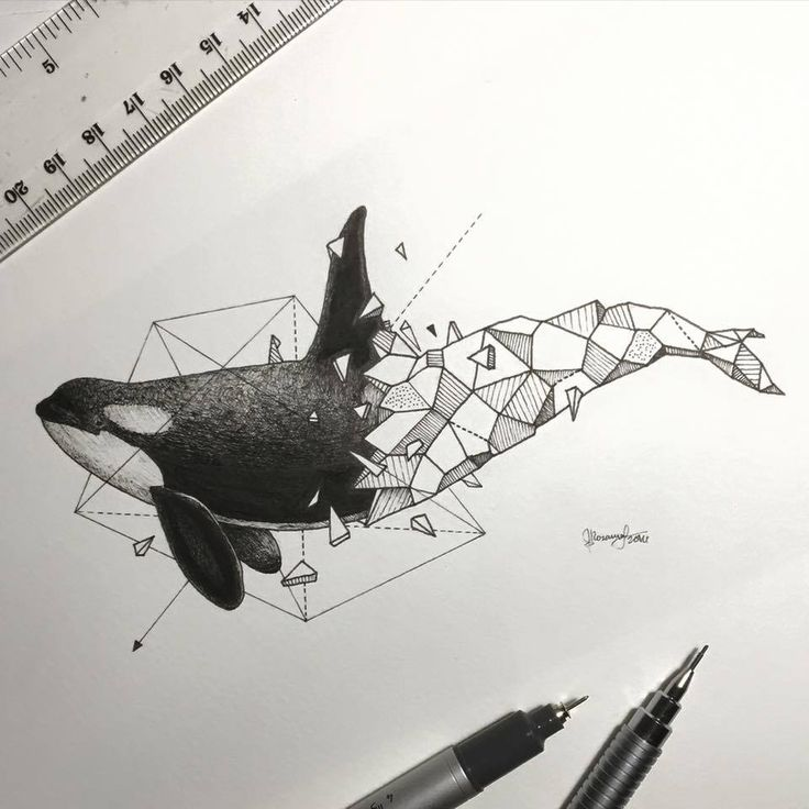 Lovely Half-Geometrical Drawings of Wild Animals 12
