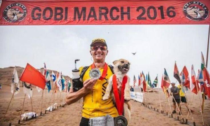 Il cane corre con lui nel deserto cinese: l'atleta vorrebbe adottarlo, ma...
