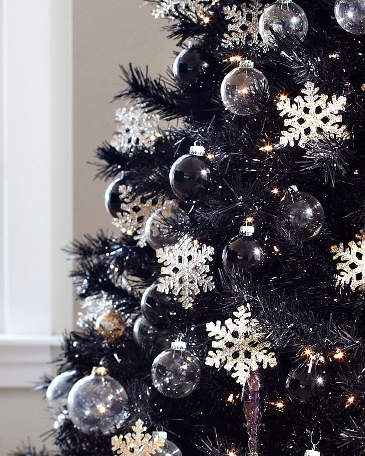 Dressed to the nines in jet black needles, the Tuxedo Black Christmas tree makes any celebration in your home a star-studded, red-carpet affair. Description from pinterest.com. I searched for this on bing.com/images